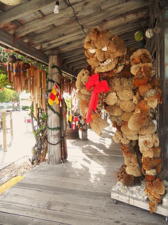 Спешите жить медленно. Ки-Уэст (Key West). Изображение № 21.