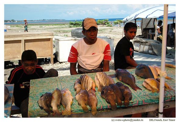 Восточный Тимор. Изображение № 7.