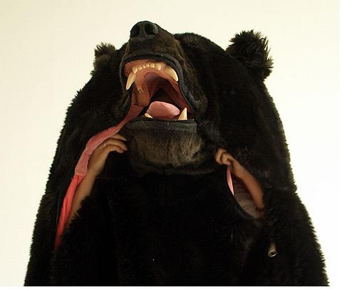 Медведь-спальник. Изображение № 2.