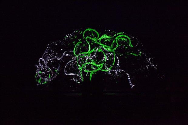 Гид по «Ночи новых медиа»: Современное искусство в Калужской области. Изображение № 4.