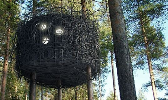Treehotel. Изображение № 4.