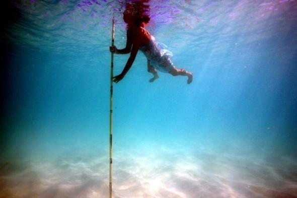 Подводные фотографии Джеймса Купера. Изображение № 2.