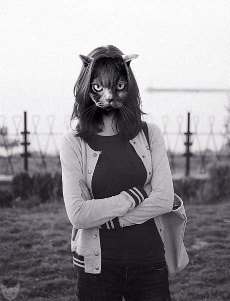 Культ личности кошки. Изображение № 6.
