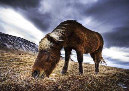 HDR-фотограф Трей Ретклифф (Trey Ratcliff). Изображение № 13.