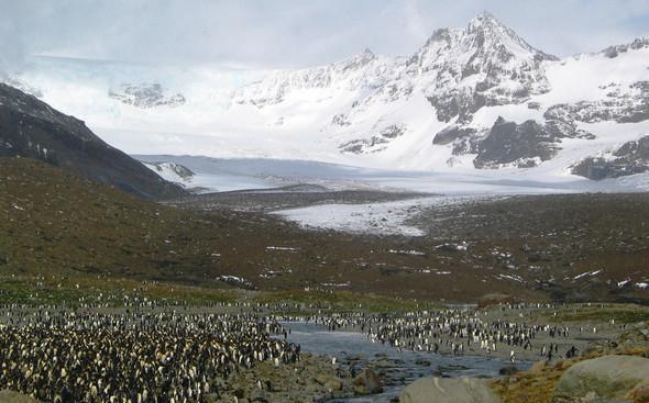 Антарктические сны. Красоты южного полюса. Изображение № 23.