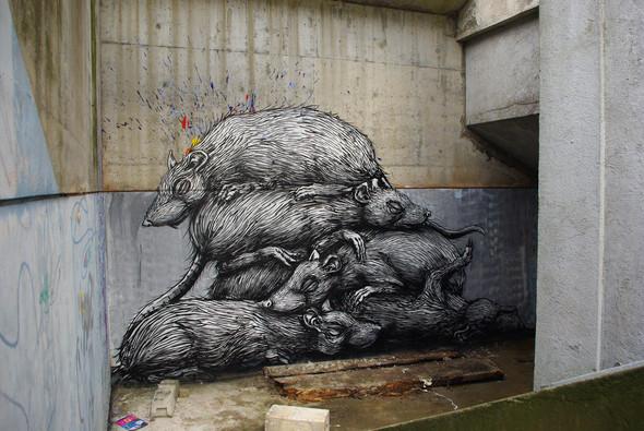 Животный стрит-арт от бельгийского граффитчика ROA. Изображение № 18.