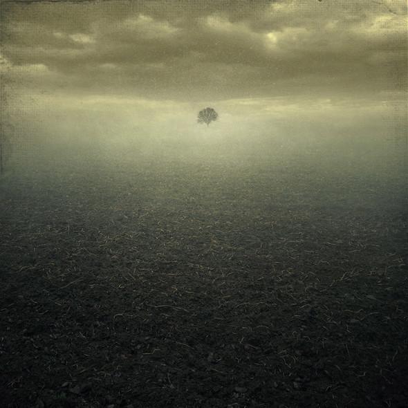 ''Reality isboring''. Изображение № 16.