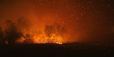 Пожары вКалифорнии. Изображение № 23.