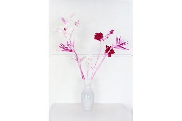 Jaap Scheeren and Hans Gremmen Fake Flowers in Full Color. Cерия, состоящая только из фотографий неживых объектов. Изображение № 31.