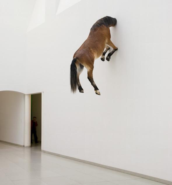 """Нью-Йоркская выставка Маурицио Каттелана """"Все"""". Изображение № 3."""