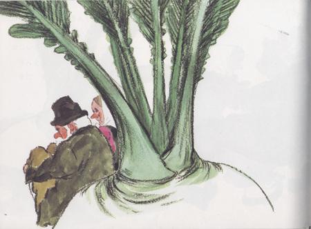 Репка пояпонски. Изображение № 11.