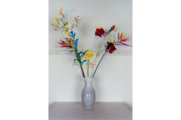Jaap Scheeren and Hans Gremmen Fake Flowers in Full Color. Cерия, состоящая только из фотографий неживых объектов. Изображение № 29.