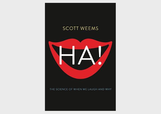 Почему мне смешно: научное объяснение интернет-шуток. Изображение № 2.