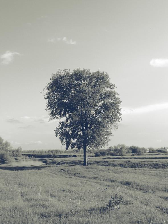 Фото by Chiile. Изображение № 5.