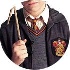 Where to Buy: Гарри Поттер. Изображение № 4.