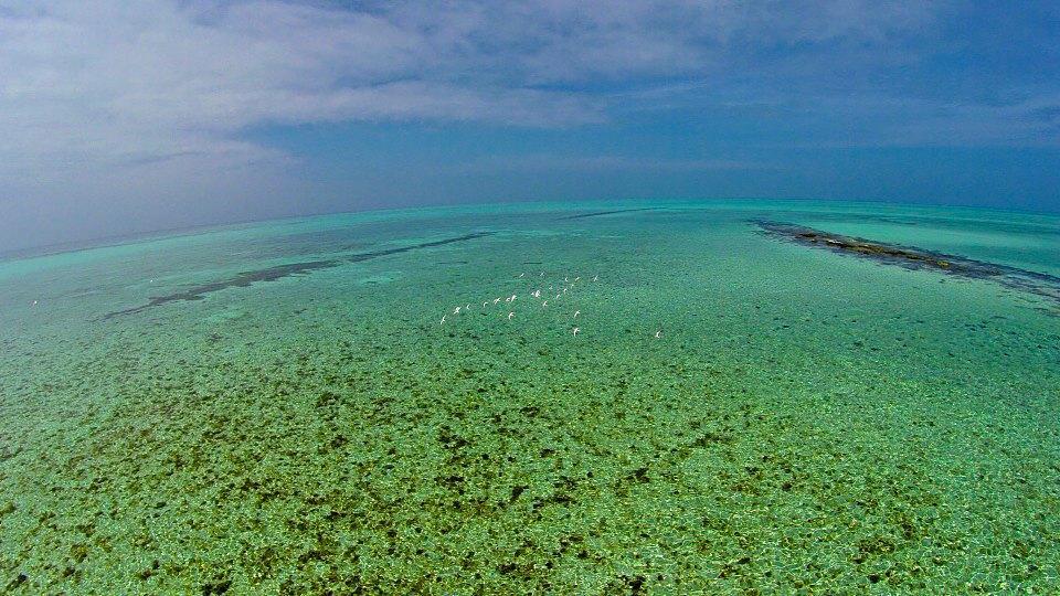 С высоты птичьего полета: Лучшие дрон-фотографии в мире. Изображение № 16.