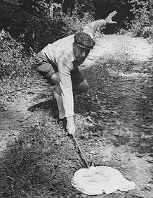 Признания человека-мотылька. Владимир Набоков. Изображение № 8.