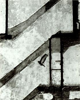 Андре Кертеш 1894–1985. Изображение № 12.