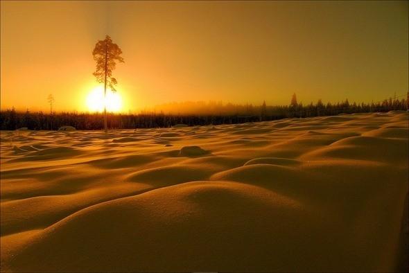 Изображение 11. Выходные в шведском лесу.. Изображение № 11.