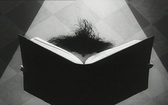 6-минутный оммаж фильмам ужасов и немецким экспрессионистам. «Винсент» 1982. Изображение №46.