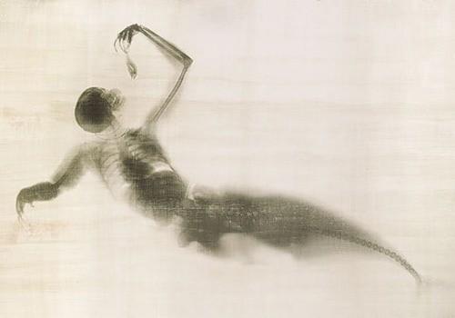Benedetta Bonichi: Взгляд изнутри - рентген как искусство. Изображение № 5.