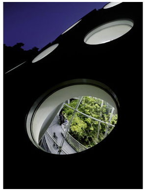 Академия подзелёным покрывалом. Изображение № 7.