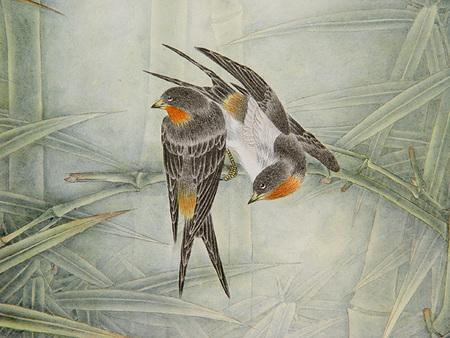 Птицы ицветы. Изображение № 16.
