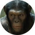 Изображение 2. Трейлер дня: «Восстание обезьян».. Изображение № 3.