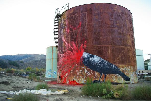 Животный стрит-арт от бельгийского граффитчика ROA. Изображение № 32.