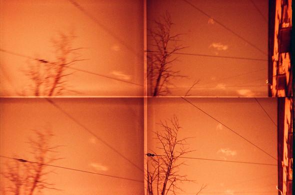 Хочется солнца, а выходит только терск и хруст.. Изображение № 11.