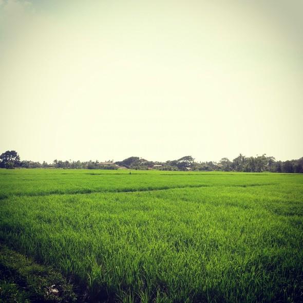 TravelWord: Даша Малыгина о Филиппинах. Изображение №37.