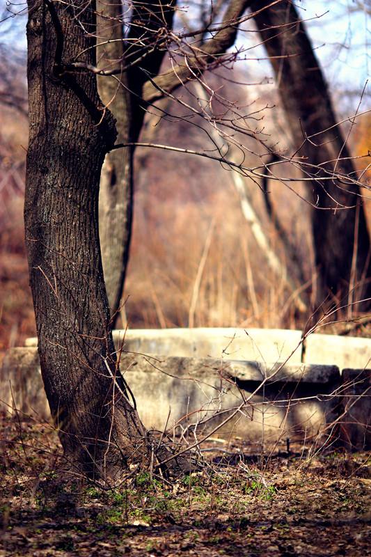 """""""Наступает"""". Фотограф Мария Гомолова. Изображение № 4."""
