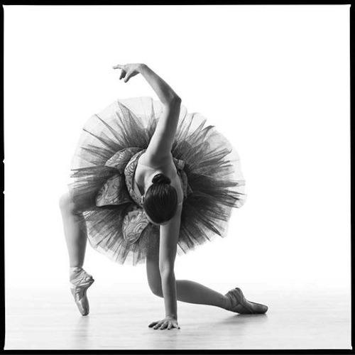 Танец в объективе. Изображение № 17.