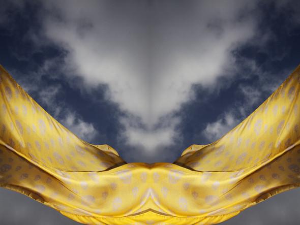 Изображение 6. Лукбук: платки Alexander McQueen SS 2011.. Изображение № 6.