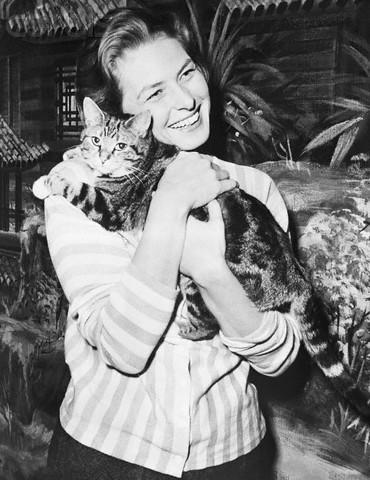Коты и их знаменитости. Изображение № 10.