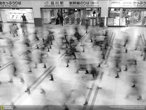 Фотограф:  Peter Franc / Место: Токио, Япония. Изображение № 11.