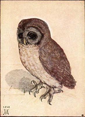 АЛЬБРЕХТ ДЮРЕР (1471–1528). Изображение № 1.