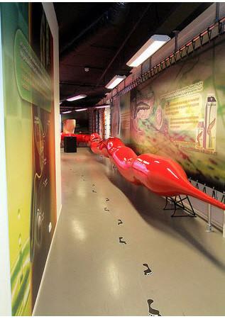 В поисках «Немо»: Гид по мировым музеям науки. Изображение № 131.
