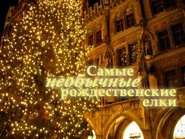 Самые необычные рождественские елки. Изображение № 1.