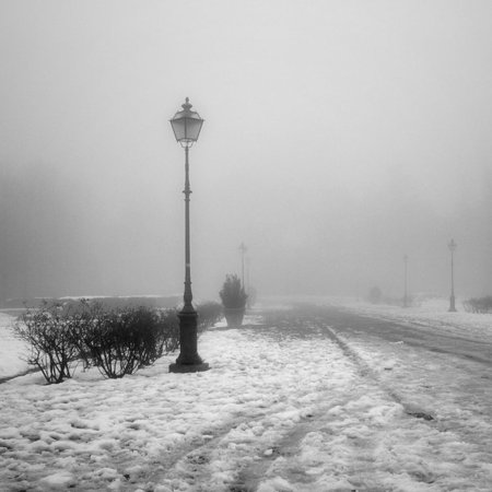 Туманные фотографии. Изображение № 23.