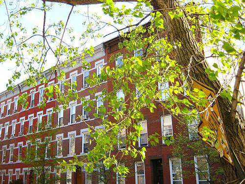 Диснейлэнд дляхипстеров: Вильямсбург, Нью-Йорк. Изображение № 10.