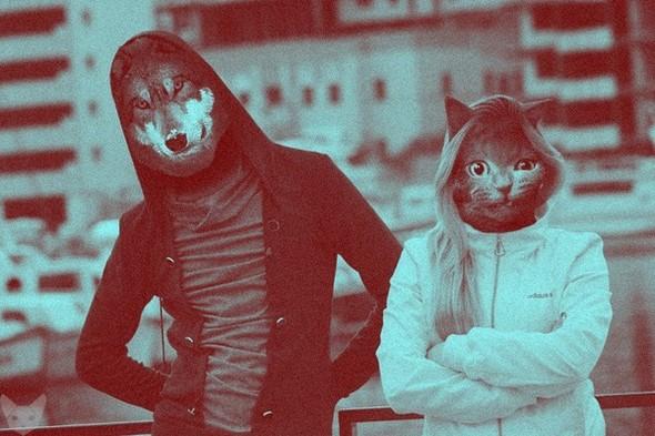 Культ личности кошки. Изображение № 8.