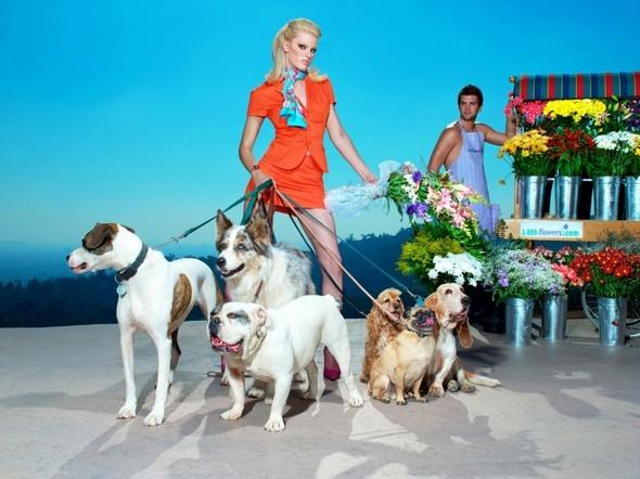 Выставка: Vice Photo Show 2011. Изображение № 27.