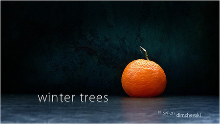 Winter Trees. Изображение № 1.