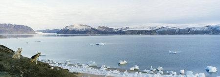 Остров Туле Тиины Итконен. Изображение № 2.