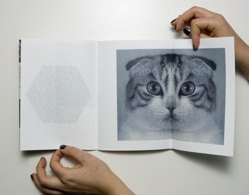 Кошка сама по себе. Изображение № 4.