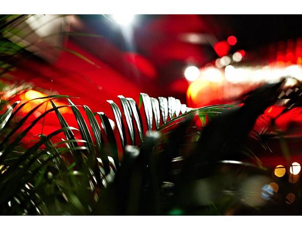 """Изображение 28. Дизайн Nina Donis для арт-проекта """"Бистро-16"""".. Изображение № 24."""