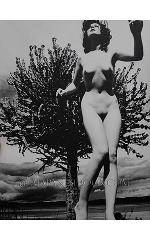 Части тела: Обнаженные женщины на фотографиях 50-60х годов. Изображение № 162.