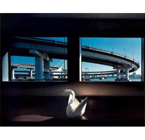 Большой город: Токио и токийцы. Изображение № 195.