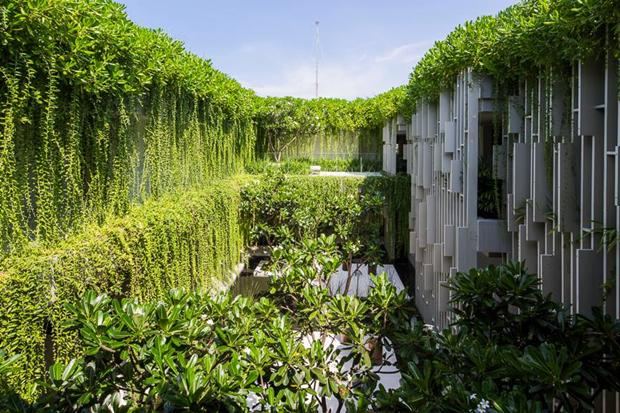 Архитектура дня: белый спа-центр во Вьетнаме с растениями на фасаде. Изображение № 9.